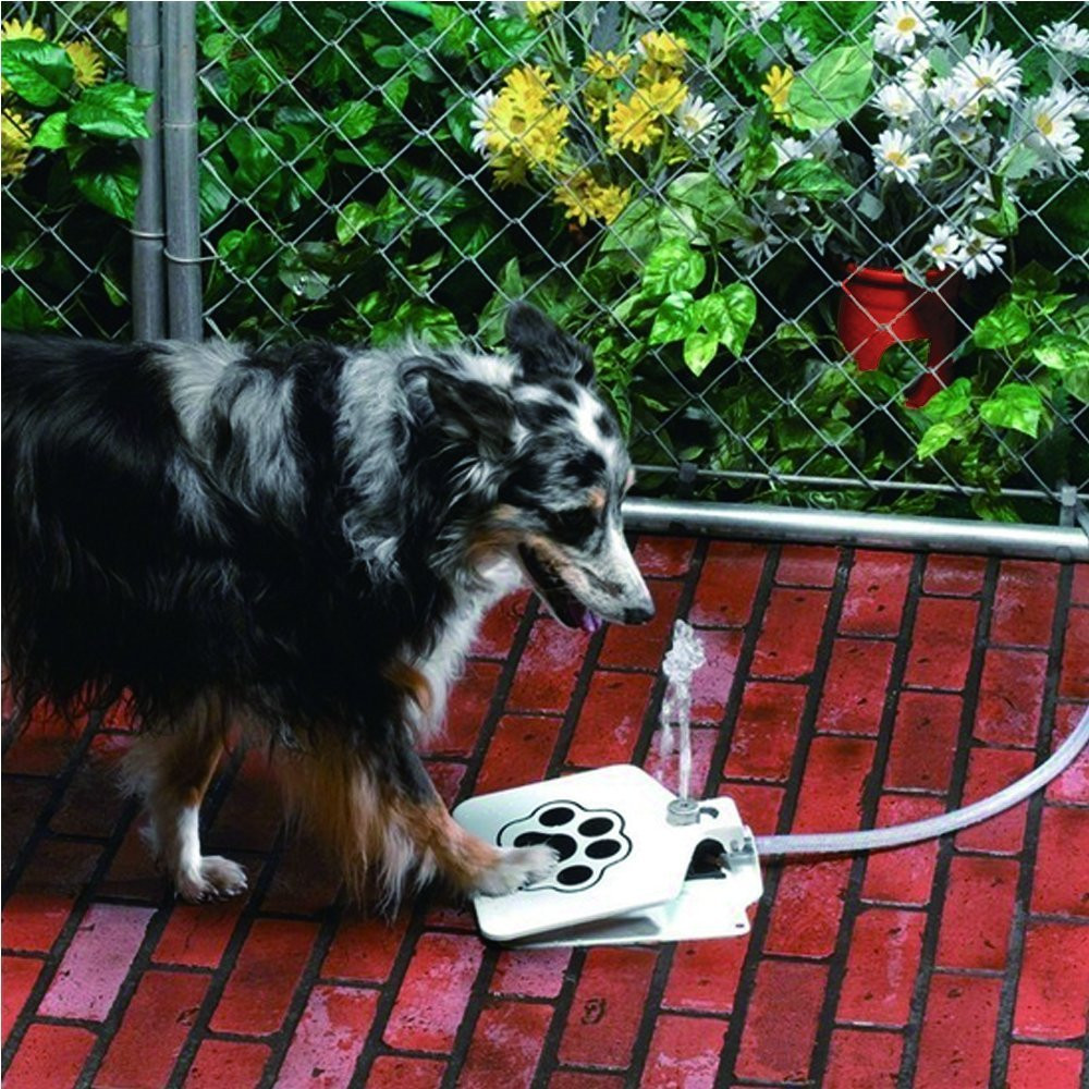 Trouble Free Outdoor Dog Cat Pet Drinking Doggie Water Fountain New Sprinkler Ezdeals Org One Place For All Deals And Codes